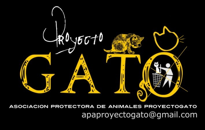 PROYECTO GATO