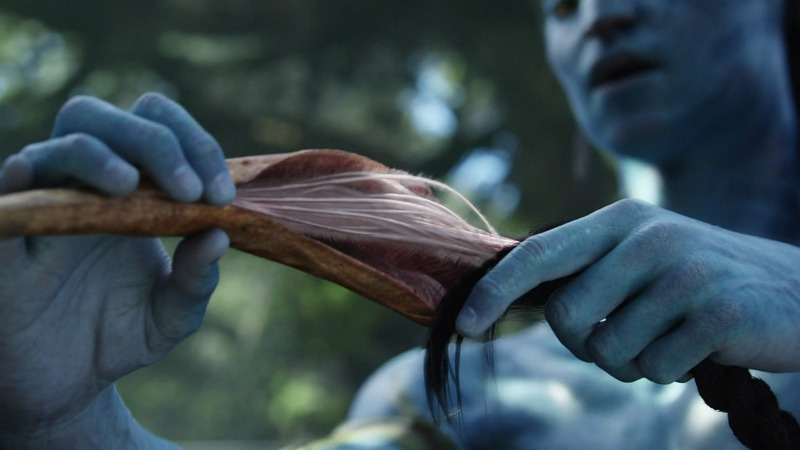 Lunar Dreaming: How to be a Na'vi in your dreams