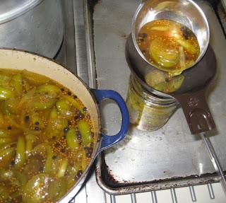 pickled venison recipes