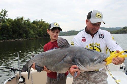 Jeff samsel fishing big cats aplenty in wheeler lake for Wheeler lake fishing report