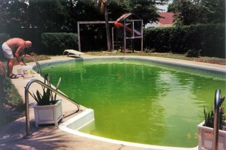 Algae Protection Guarantee