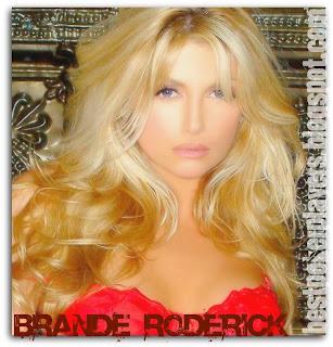Sexy Poker Playmate Brande Roderick