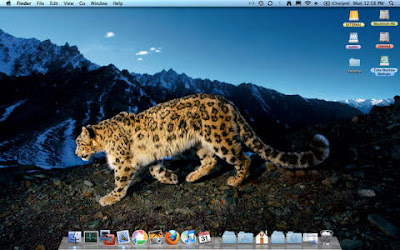 My Snow Leopard desktop