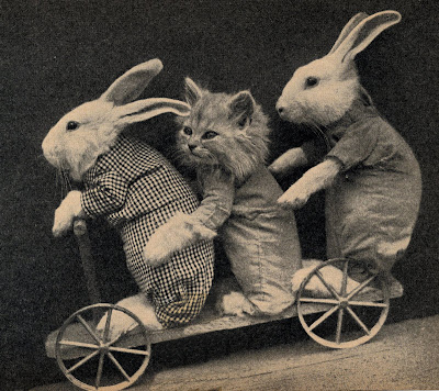 Easter bunnies and kitten