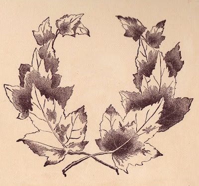 I just love this Maple leaf frame This graphic with it 39s chocolate and