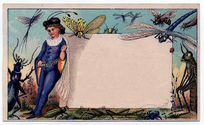 http://3.bp.blogspot.com/_CarNcodpCMA/TKUtYJvPfgI/AAAAAAAAJP4/cK-DAgTkZ1k/s400/fairycardbugs-graphicsfairy003b.jpg