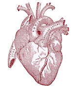This black and white Heart image comes from an 1890's Antique Anatomy book.