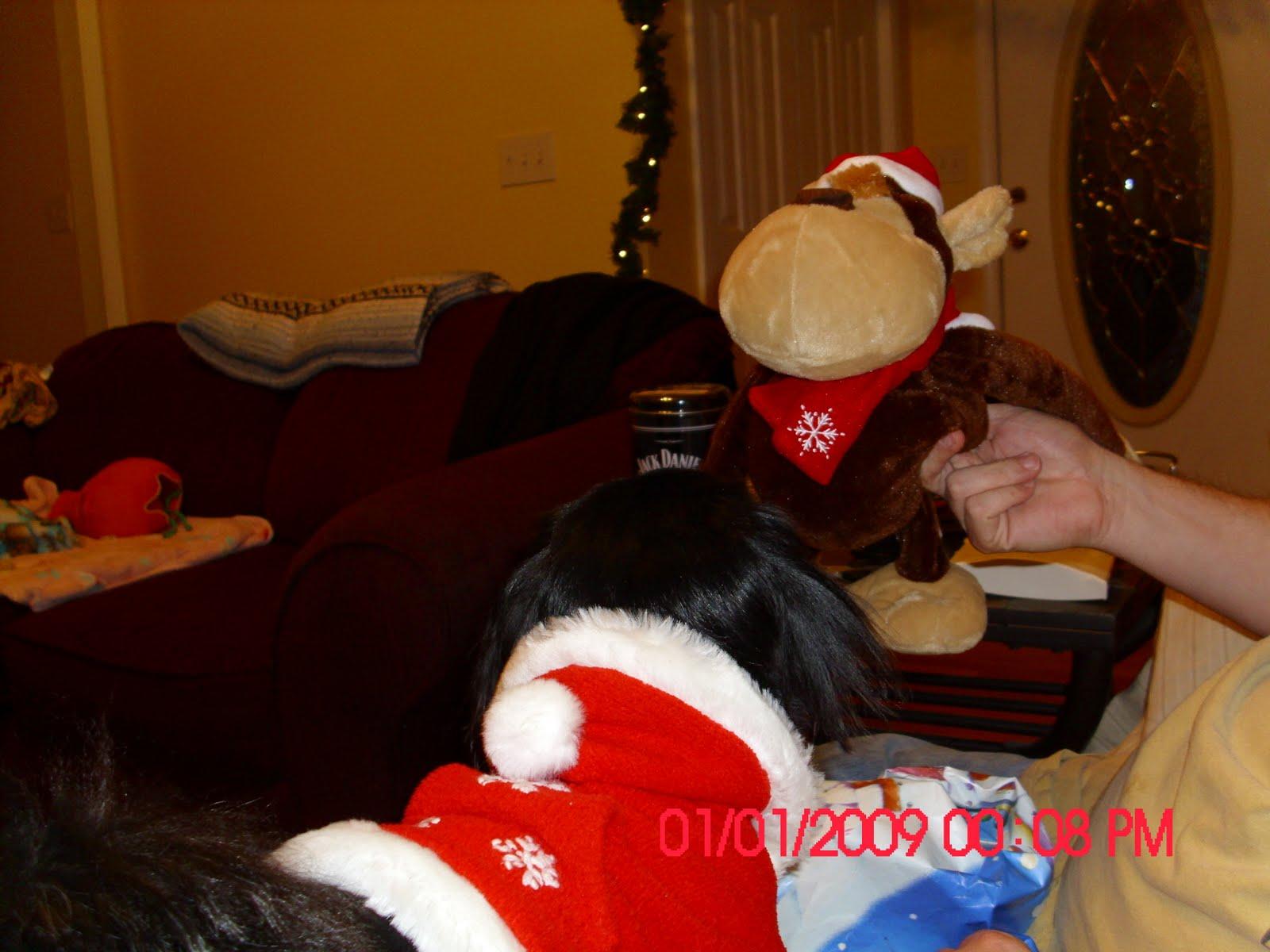 [Baby-Christmas+monkey]