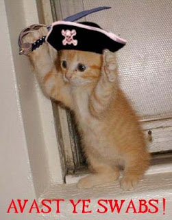 cat pirate in boat gif