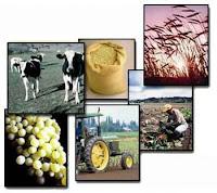 Cartillas sobre negocios agrarios