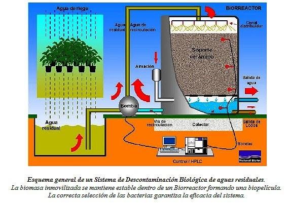 Tratamiento de aguas residuales tratamiento de aguss for Plantas de purificacion