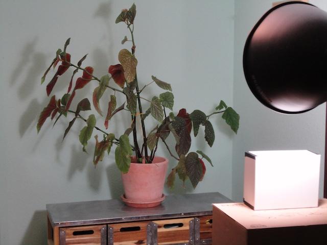 une ann e photo mon premier st nop. Black Bedroom Furniture Sets. Home Design Ideas