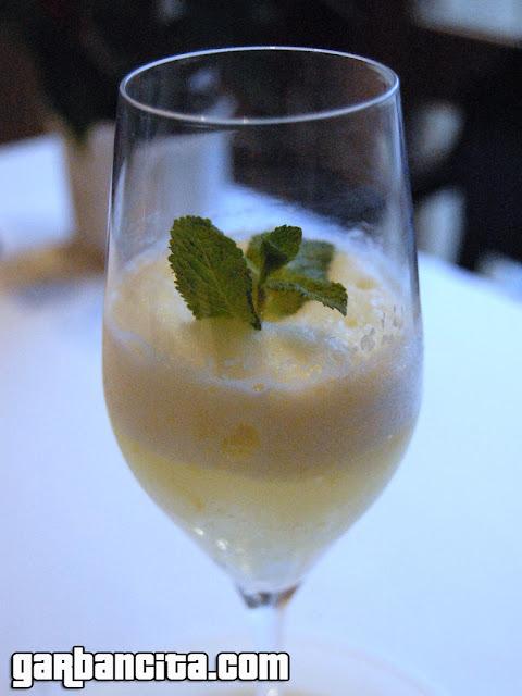 Gintonic helado