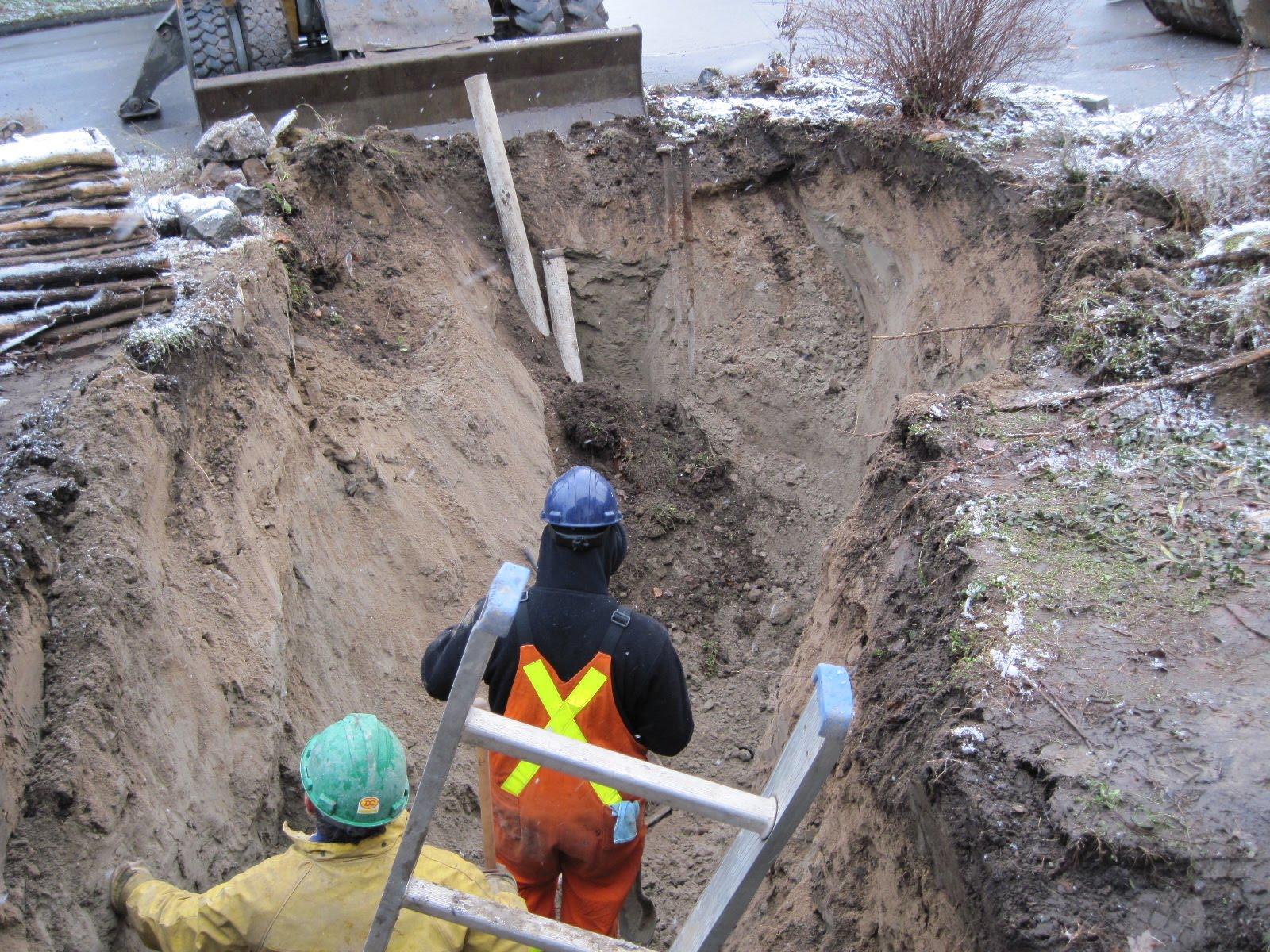 Back Yard Excavation : John toft basketry the big dig oh my front yard