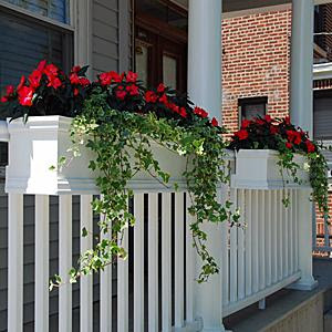 Window box planter january 2010 - Planters to hang on railing ...