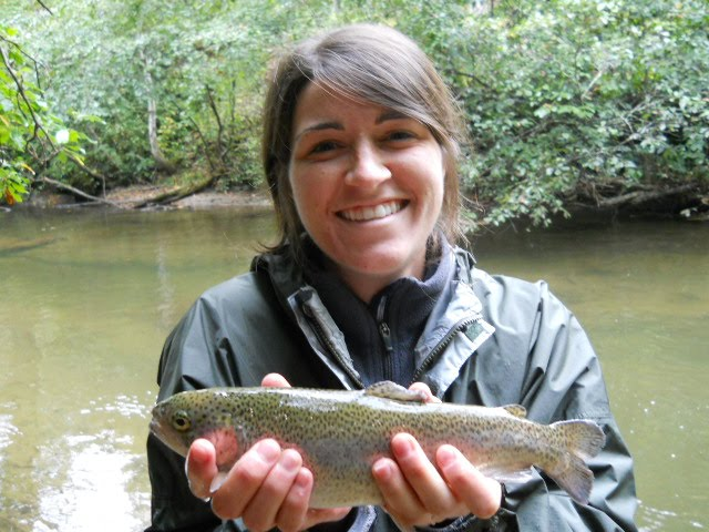 Brown trout fly fishing east fork french broad for French broad river fishing