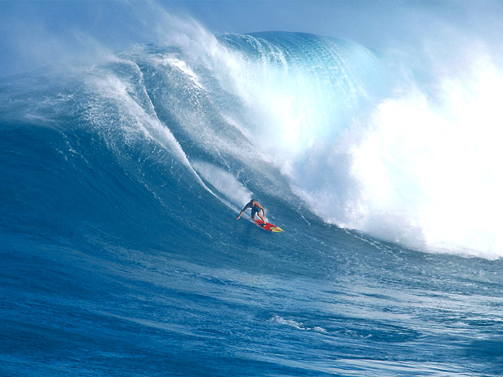 Maui Hawaii Surfing Wallpaper Download (1024 x 768 )