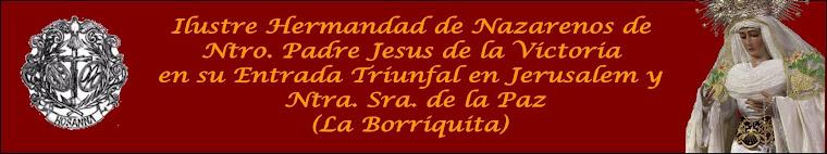 Hermandad de la Borriquita de Almeria