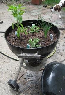 BBQ grill planter