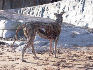 wooden dogsculpture