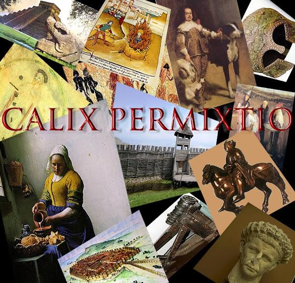 Calix Permixtio