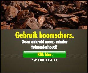 boomschors