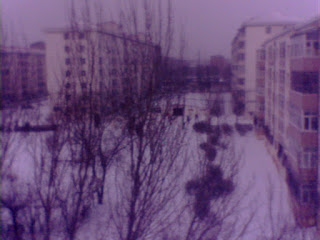 8th snow in Qiqihar, China - zhudajiu朱大九 - zhudajiu朱大九——龙泉之眼