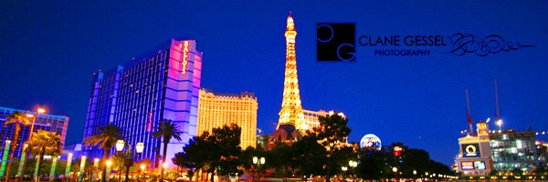 the paris and bellagio hotel and casino on the las vegas strip wedding photography