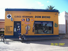 CLINICA VETERINARIA DON BICHO