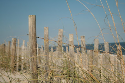 Beautiful beaches like this one could be undermined by so-called stabilization projects.