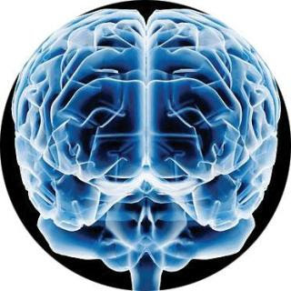 Cerebro suicida