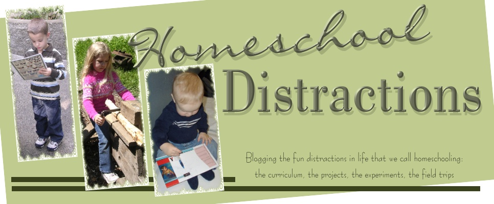 Homeschool Distractions