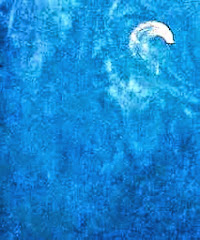 Pensosa luna