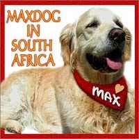 In Memory of our Friend MaxDog!