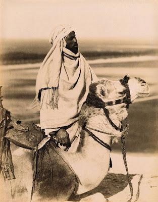 Отдых верблюда, фотограф Зангаки, 1870 год, Египет. Repos d'un chameau. Zangaki, 1870 (Egypte). http://expositions.bnf.fr/veo/feuilletoirs/index.htm