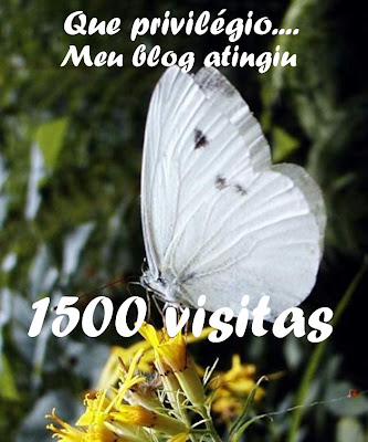 [1500+visitas.JPG]