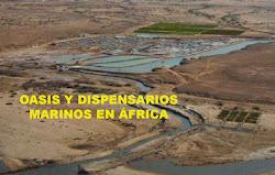 INFORME OASIS Y DISPENSARIOS MARINOS EN ÁFRICA