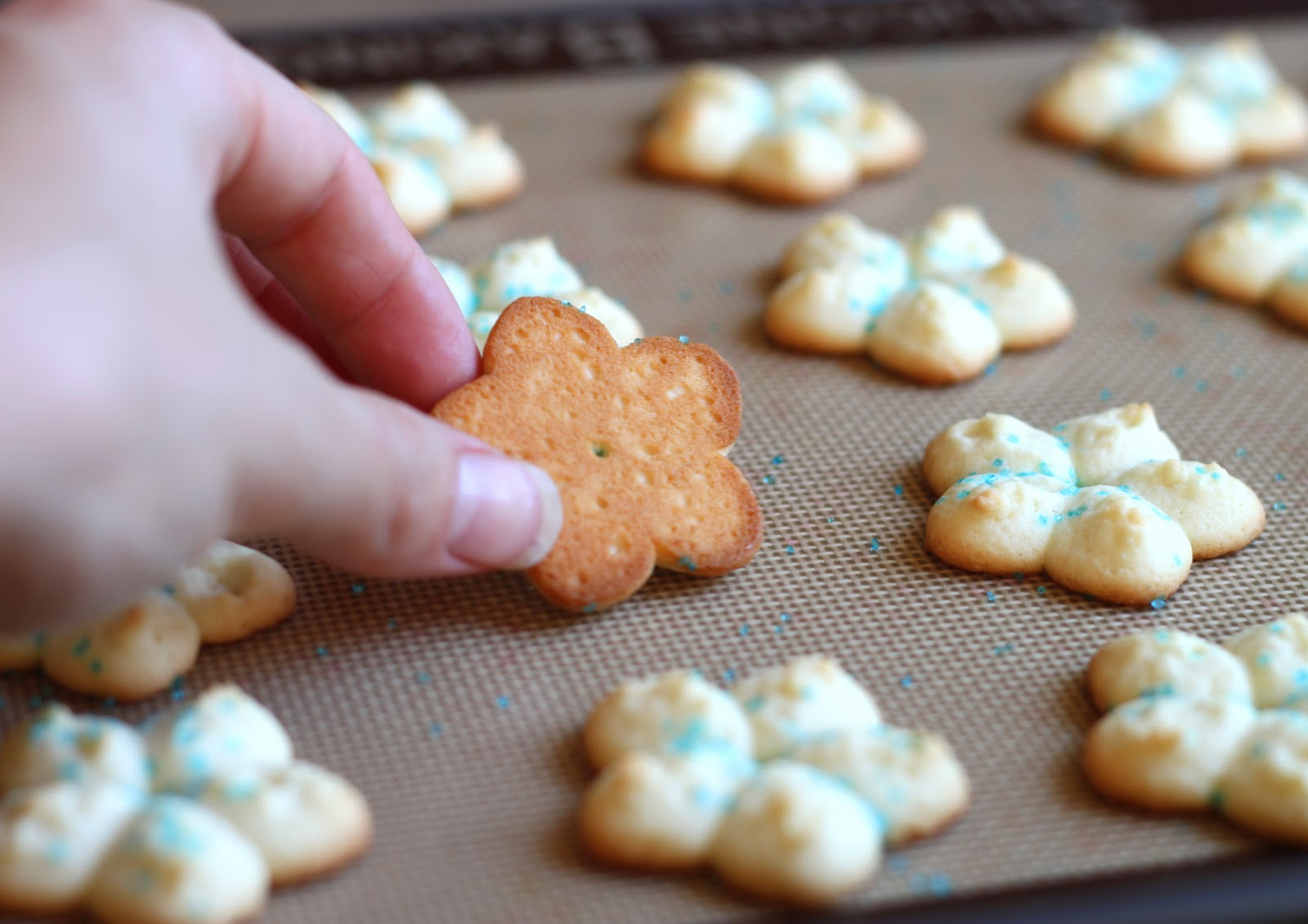 The Cilantropist: My Grandma's Spritz Cookies, or ...