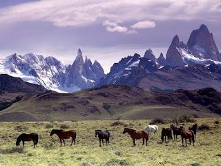 Papel clave de los Andes en la aparición y extensión de la biodiversidad tropical