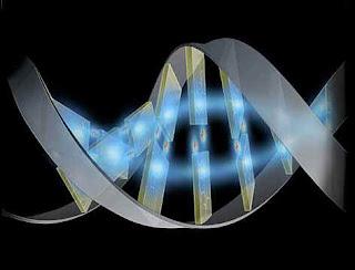 Secuenciado el quinto genoma humano