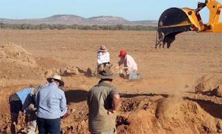 Paleontólogos australianos han descubierto una nueva especie de dinosaurio. EFE