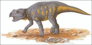 El primer dinosaurio cornudo procedente de Europa