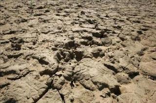 El cambio climático podría afectar más al Mediterráneo con tormentas y sequía