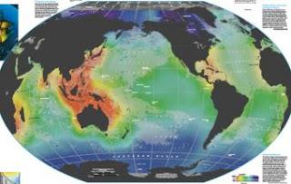 Parte del mapa interactivo hecho por National Geographic sobre los resultados del Censo de la Vida Marina