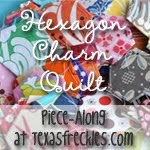 Hexagon Charm Quilt