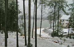 Snowday, delightful!
