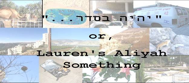 """יהיה בסדר""...or, Lauren's Aliyah Something"