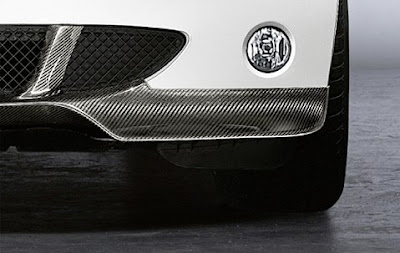 BMW Front splitter in carbon