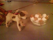 Nålfiltad sockerhund