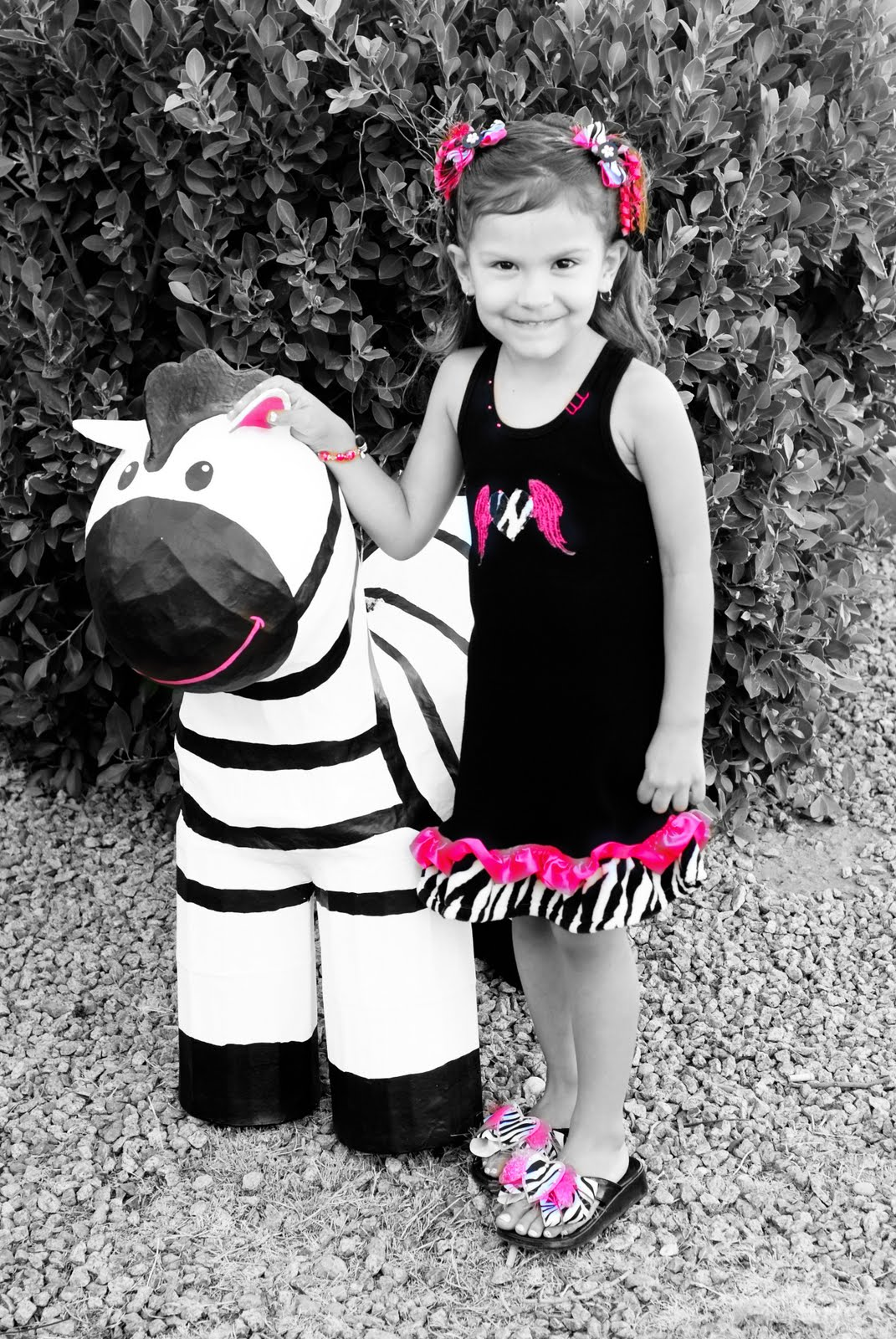 zebra and the girl